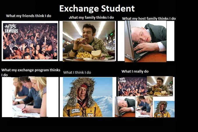 erasmus meme about the reality