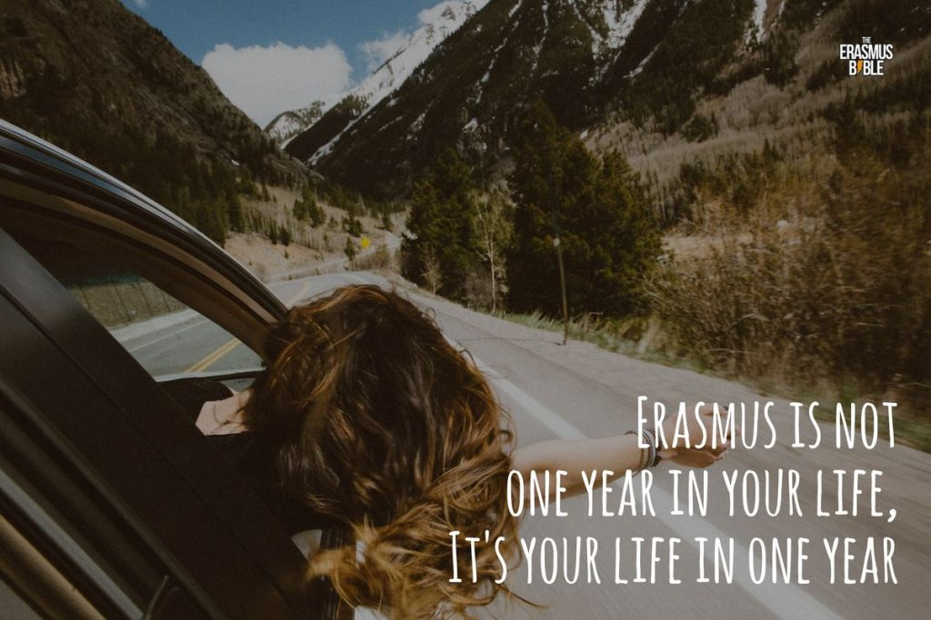 erasmus meme saying it's a life in one year