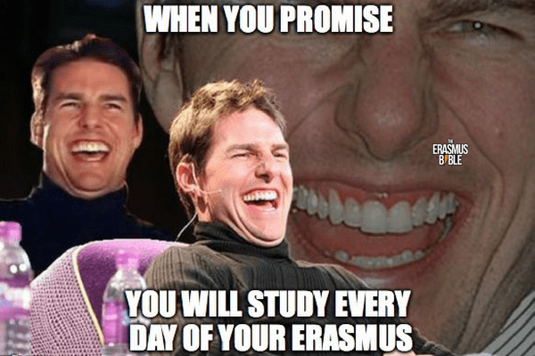 erasmus meme about promising to study