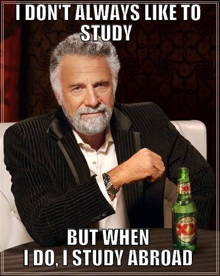 erasmus meme about liking to study abroad