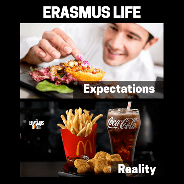 erasmus meme about expectations and reality of food