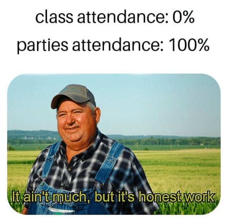 erasmus meme about attendance of parties and class
