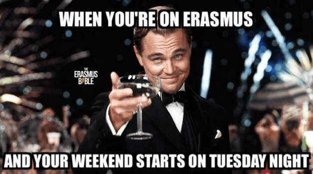 erasmus meme about partying the whole week with dicaprio