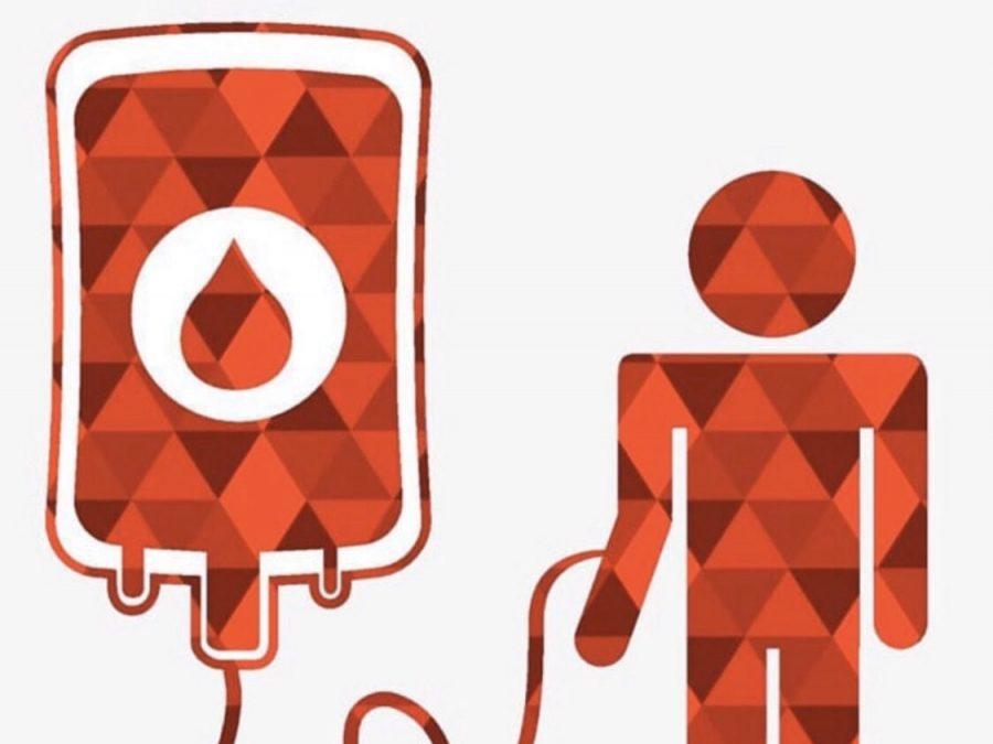 donorystė karantino metu
