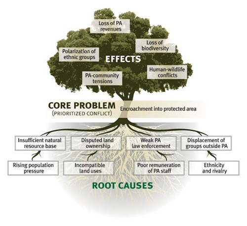 Project's problem tree with the core problem, effects and root causes