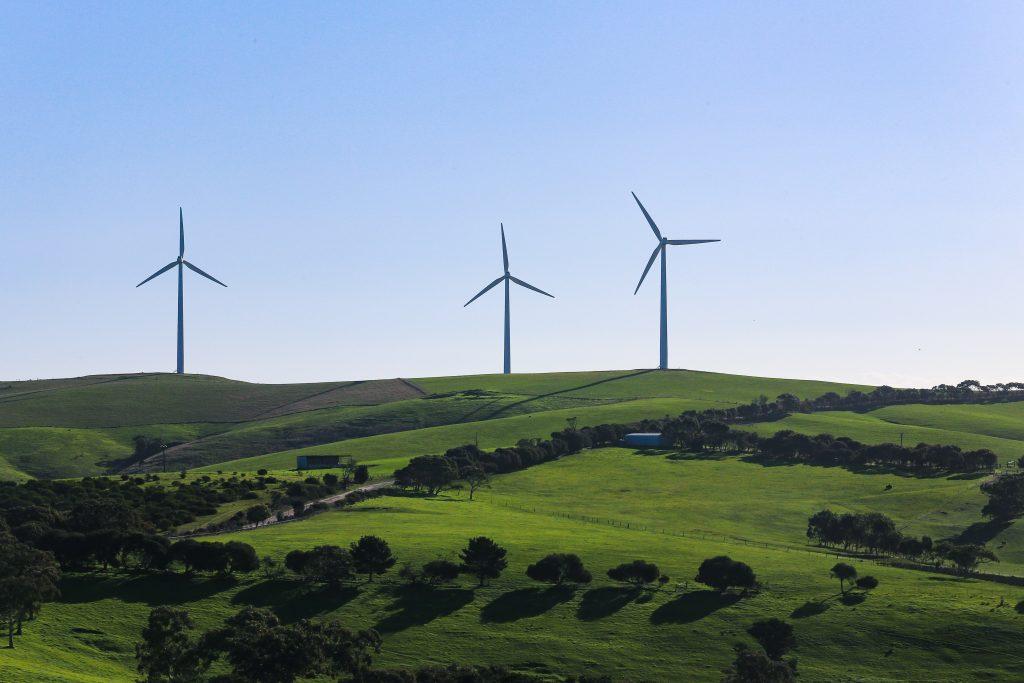 žalias vėjo jėgainių projektas